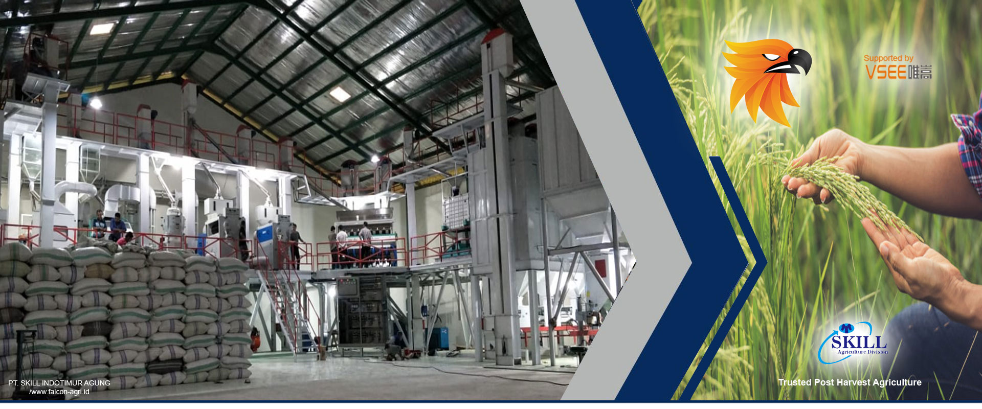 PT. Skill Indotimur Agung, PT Skill Indotimur Agung, PT Skill, PT. Skill, PT Skill Surabaya, pt skill bandung, pt skill jakarta, pt skill indonesia, Dryer, Heating furnace, Cleaner Series, Destoner Series, Rubber Roll Husker Series, Separator Series, Double separator, Vertical Whitener Series, Whitener Series, Mist Polisher Series, Grader Thickness Series, Intelligent CCD Rice Color Sorter, Packing Machine, Flowing Scale , Blending Mixer, Hummer Mill, mesin pertanian, Pabrik mesin pertanian, distributor mesin pertanian, supplier mesin pertanian, mesin pertanian surabaya, mesin pertanian indonesia, mesin pertanian murah, mesin pertanian jakarta, toko mesin pertanian, agen mesin pertanian, agen tunggal mesin pertanian, jual mesin pertanian, harga mesin pertanian, jual mesin pertanian surabaya, harga mesin pertanian surabaya, paddy to rice , paddy to rice machine, jual paddy to rice machine, harga paddy to rice machine, distributor paddy to rice machine, paddy to rice machine surabaya, rice to rice , paska panen , pasca panen , mesin pasca panen , jual mesin pasca panen , harga mesin pasca panen, mesin pasca panen kopi, mesin pasca panen padi, jual mesin pasca panen padi, harga mesin pasca panen padi, distributor mesin pasca panen padi, supplier mesin pasca panen padi, mesin pasca panen padi surabaya, mesin pasca panen padi murah, mesin pasca panen kakao, mesin pasca panen karet, mesin pasca panen jagung, mesin pasca panen pdf, mesin pasca panen adalah, mesin pasca panen kedelai, alat dan mesin pasca panen, mesin pengolah padi, Pabrik mesin pengolah padi, distributor mesin pengolah padi, supplier mesin pengolah padi, mesin pengolah padi surabaya, mesin pengolah padi indonesia, mesin pengolah padi murah, mesin pengolah padi jakarta, toko mesin pengolah padi, agen mesin pengolah padi, agen tunggal mesin pengolah padi, jual mesin pengolah padi, harga mesin pengolah padi, jual mesin pengolah padi surabaya, harga mesin pengolah padi surabaya, jual mesin padi , harga mesin p